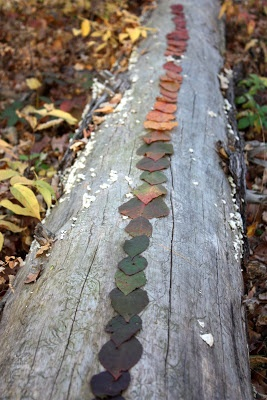 Collect leaves and with children, lay them out according to colour, tone, variegation... Beautiful idea ♥