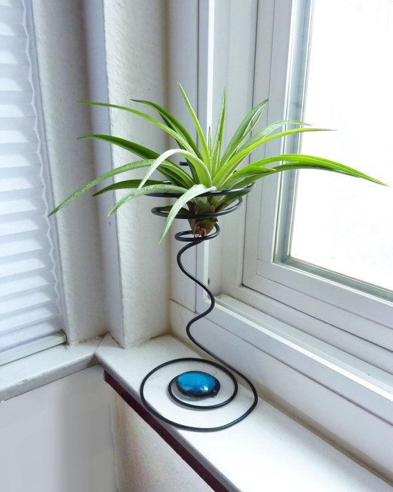 Wire Air Plant Holder- Tall Quirky