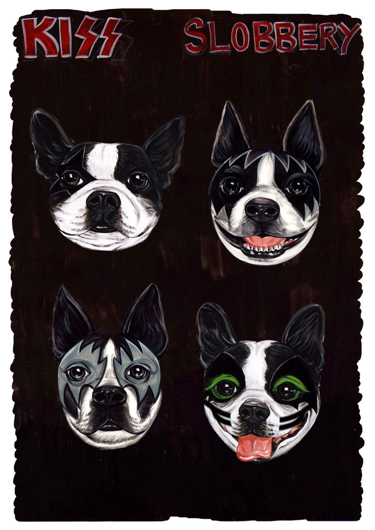 Boston Terrier as KISS - Get your Slobbery Print- One of a kind by PawmazingGifts on Etsy https://www.etsy.com/listing/115295022/boston-terrier-as-kiss-get-your-slobbery
