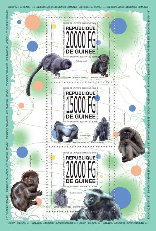 GU 13514 aMonkeys, (Callimco goeldii, Gorilla beringei, Hylobates moloch).