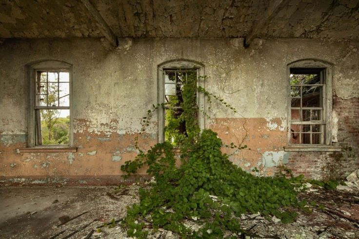 Hart Island History and Abandoned Photography at Opacity. ..♥.Nims.♥