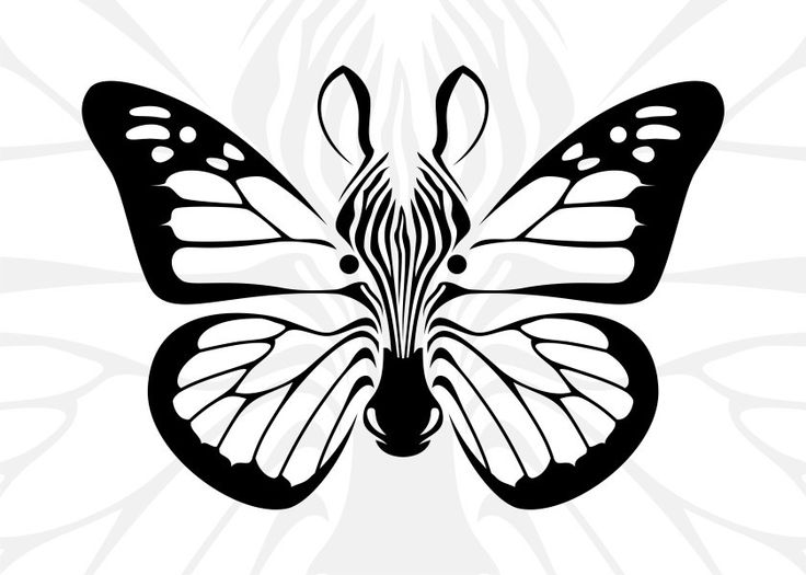 #Illustration of #zebra head and #butterflywings combination in #blackandwhite .  Available on Displate https://displate.com/displate/89942