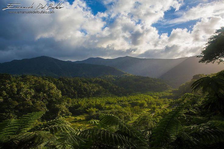 emanueledelbufalo   - Vanuatu