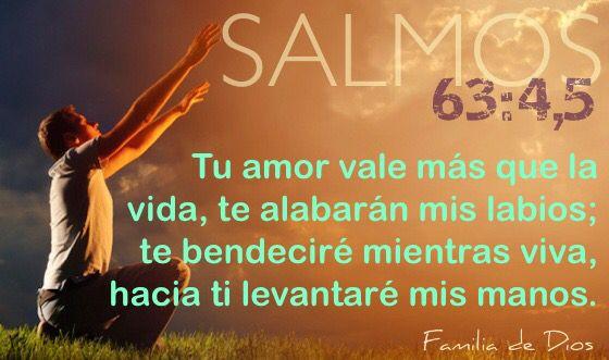 Salmos / salmo 53:4,5 / palabra de Dios / Biblia / Familia de Dios / gracias a Dios