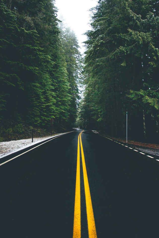 45 Foto Jalan Raya Dan Pemandangan Alam Yang Menakjubkan Di 2020 Pemandangan Fotografi Alam Fotografi