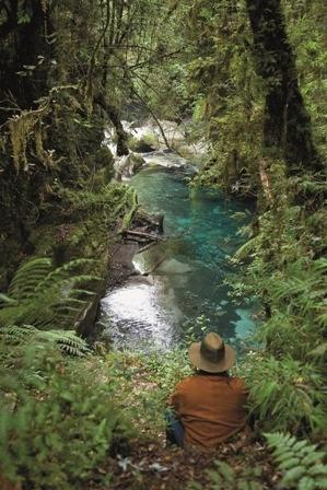 Termas Puyehue... Aguas calientes senderos