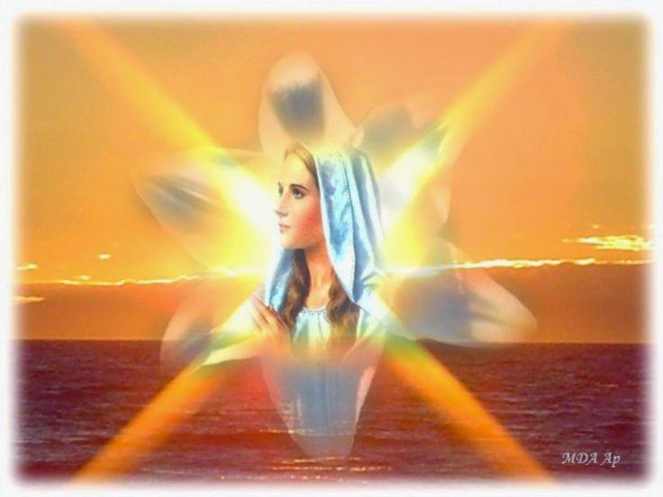 """FEEST VAN DE ZUIVERHEID VAN MARIA:   ( 16 OKT. ) - Mijn roeping bestaat hierin, elke ziel tot de volkomen vervulling van haar eigen roeping binnen Gods Heilsplan te brengen. Daartoe heb Ik haar volmaakte overgave nodig. De ziel die hier oprecht naar verlangt, zal opnieuw geboren worden en zal zichzelf niet meer herkennen. Haar duisternis zal worden tot Licht, haar onkruid tot lelies, haar lauwheid tot geestdrift, haar winter tot Eeuwige Lente""""."""