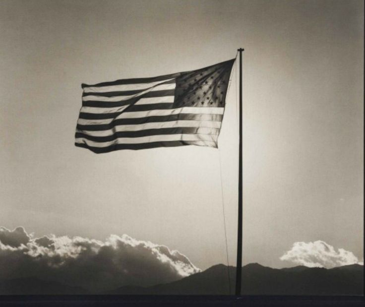#RobertMapplethorpe Flag, 1987 platinum print on linen 19 1/4 x 23 1/2 inches; Robert Mapplethorpe followed #asperJohns by making the American flag into an iconic work of art