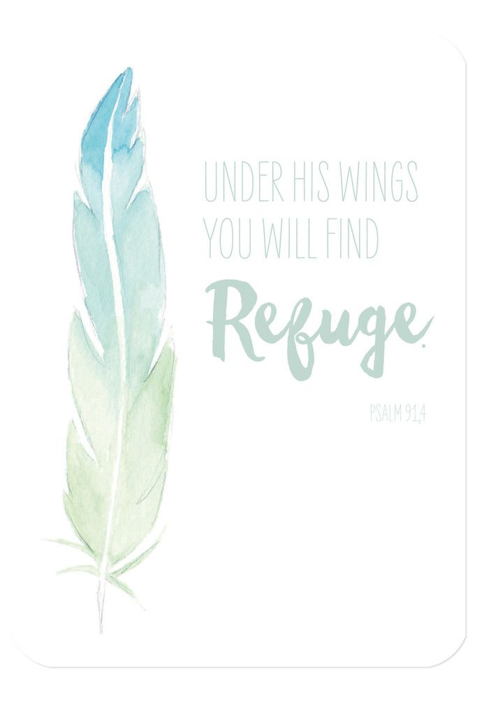 "Bibelvers auf der Postkarte: ""Under his wings you will find refuge."" - Psalm 91,4"