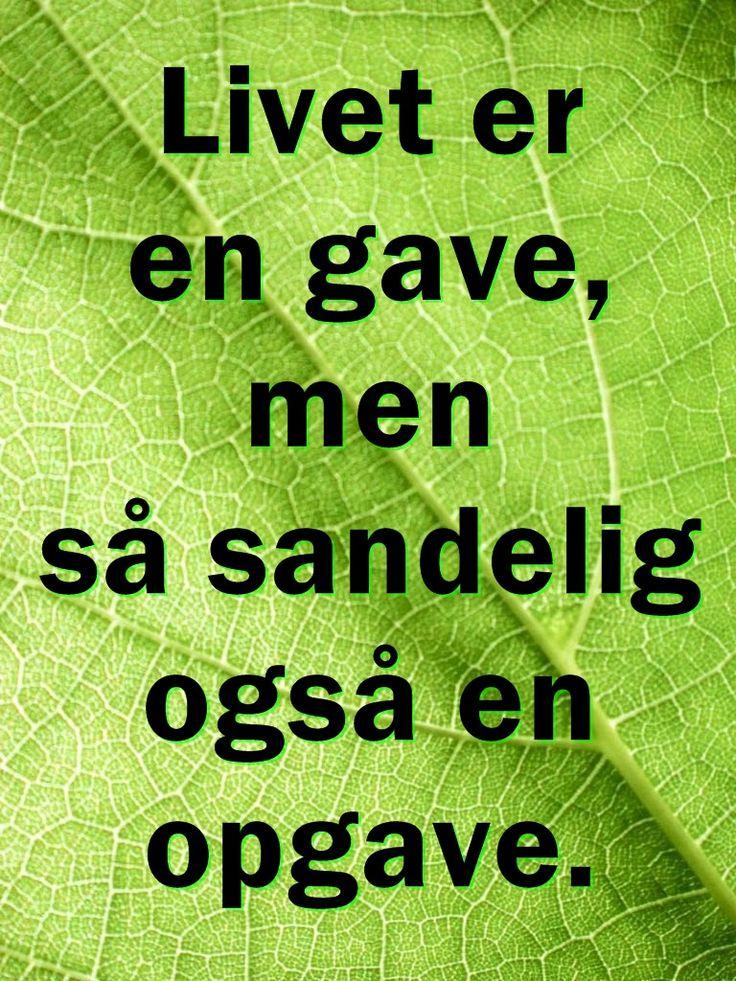 Livet er en gave ...
