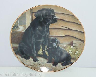 Black Labrador Lab Retriever Collector Plate Like Father Like Son Franklin Mint