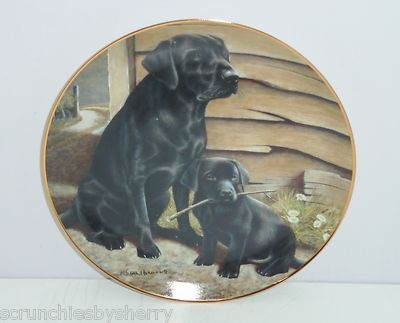 Black Labrador Lab Retriever Collector Plate Like Father Like Son Franklin Mint
