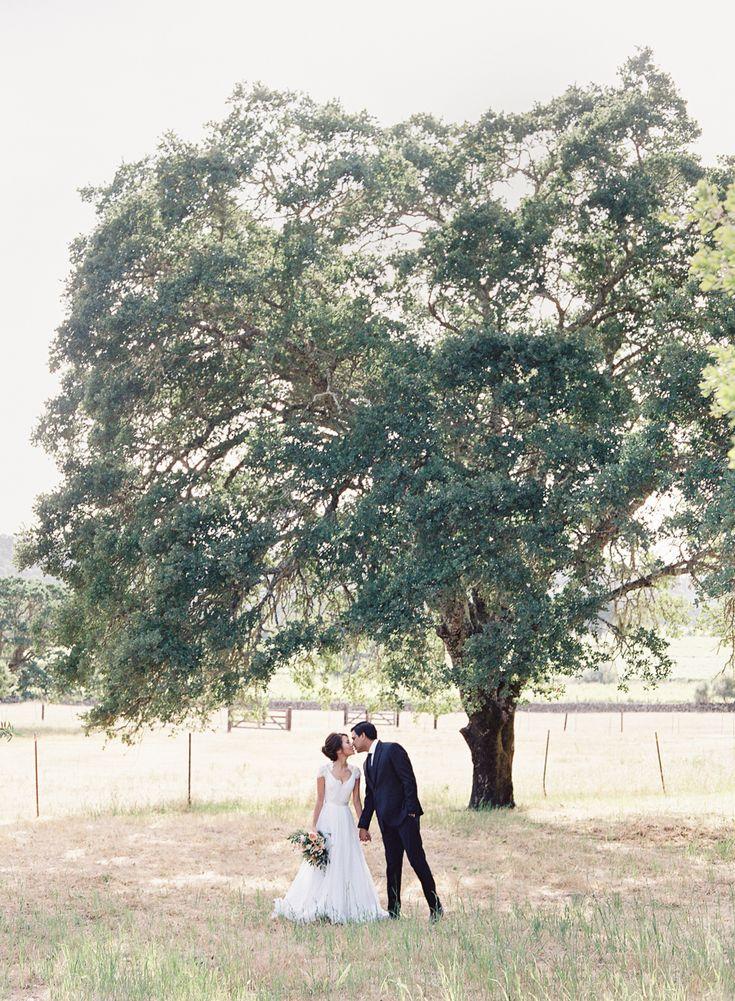 Simple Sun-Dappled Napa Wine Country Engagement: Vijay + Valerie