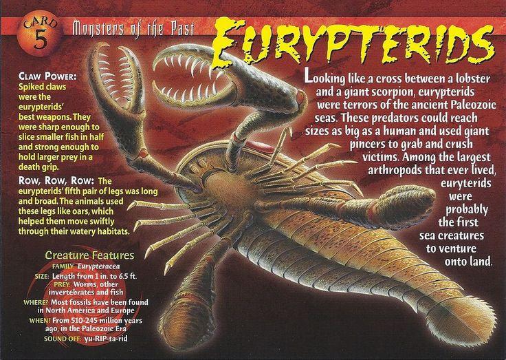 Hesperornis in 2020 | Prehistoric creatures, Prehistoric