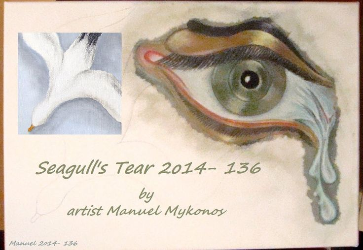 Video Seagull's Tear 2014-136 http://youtu.be/LtJXzuPfUOo