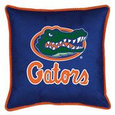 Found it at Wayfair - NCAA Florida Gators Sidelines Pillow