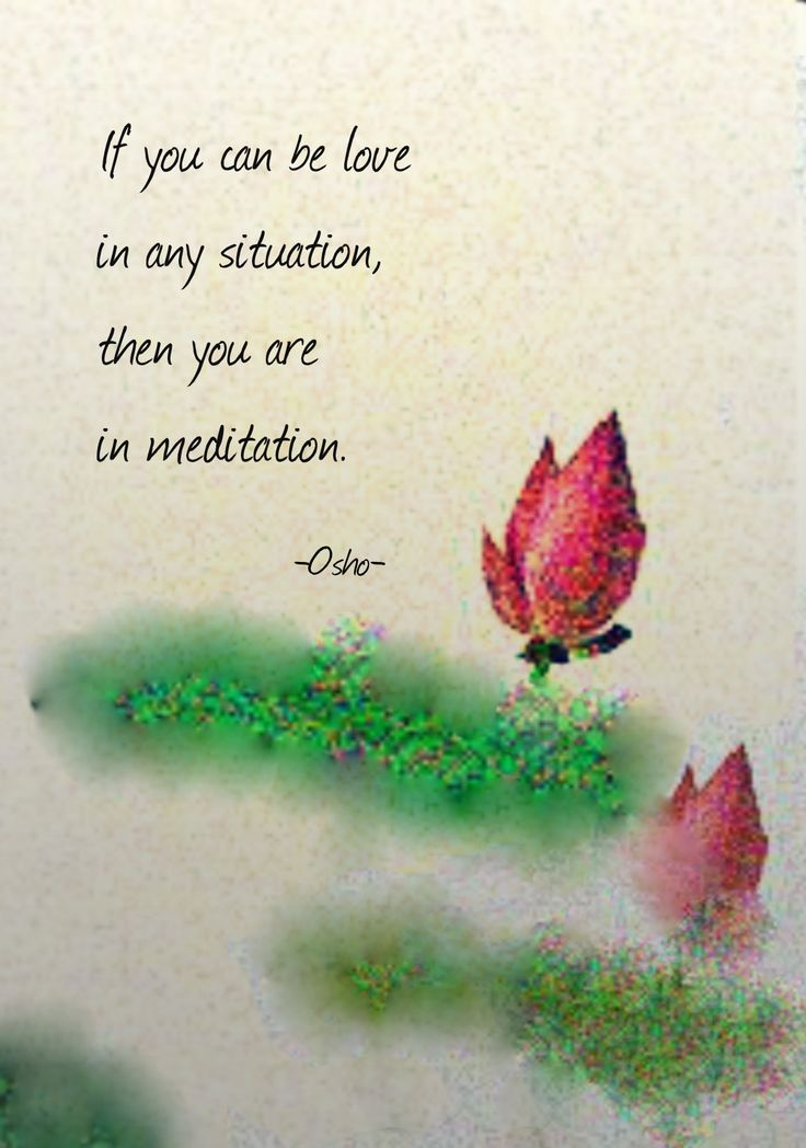 terracemuse:  If you can be love in any situation, then you are in meditation. (Osho)