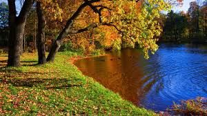 Resultado de imagen para wallpapers hd paisajes increibles
