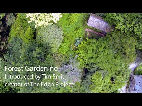 Living With The Land Part 1 - Forest Gardening | Permaculture Magazine