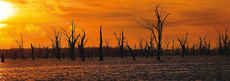Sun Country On The Murray: Part of your Sydney to Melbourne Touring road trip, highlighting places to stay, maps, attractions and itineraries