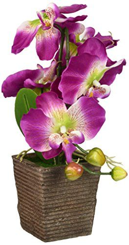 By Anya Jones | Find fake orchid plants for sale. Artificial orchid pots and stems.