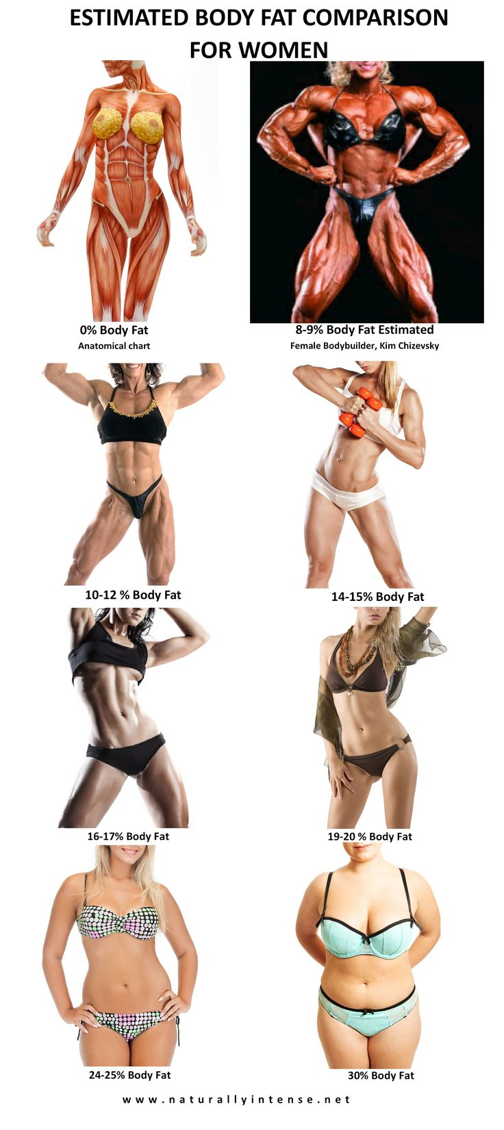 Body fat percentage comparison photographs for women