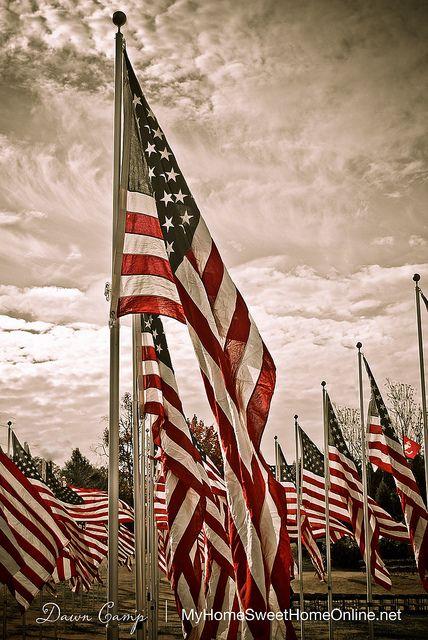 Field of American flags---