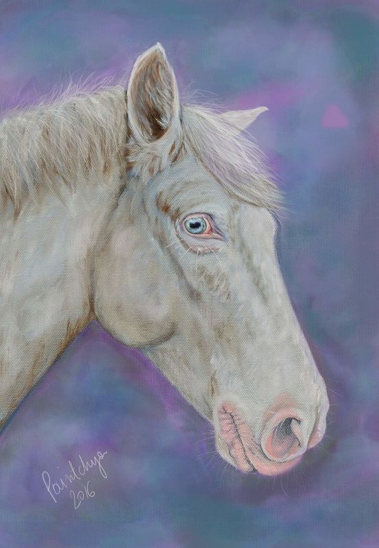 Horse portrait - digital art by Paintchya.com Order your own pet portrait from $35 for an A5 digital portrait.  #horse #horselover #instahorse #beauty #pferde #koń #caballo #cavalo #horsestagram #cavalo #horses #horsesofinstagram #koń #horseriding #horseart #equine #equineart #digitalart #digitalartist #traditionalart #wacom #furbaby #petlovers #art #digitalmedia #cutepetclub #petloversclub #oilpainting #oilportrait #horseportrait #pony #equestrian