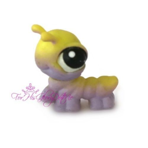 17 Best Images About Lps Worms On Pinterest Book Worms