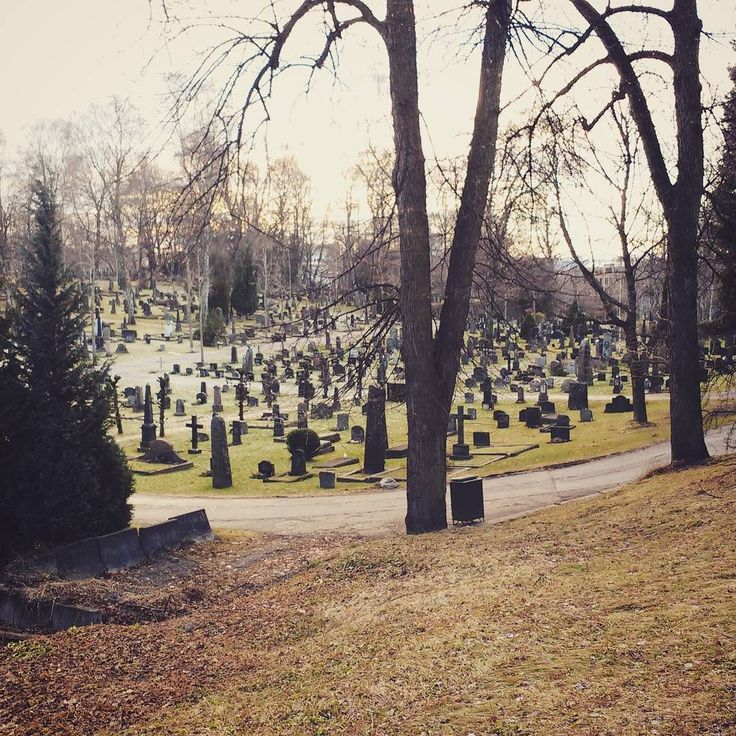 With all cafés in Oslo closed we spend a nice afternoon here. #norway #oslo #cemetery #graveyard #church #graves #trees #naturephotography #endoflife #travelgram #travel #reisen #norwegen #friedhof #friedhofsfotografie #christmas #weihnachten