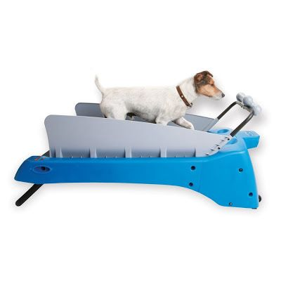 Dog Treadmill by DogTread: Dog Treadmill is perfect for small breeds up to 30 lbs. This portable treadmill lets you establish the recommended 30- 45 minutes of brisk walking your dog needs daily.