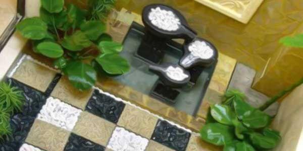 Budidaya anggrek bulan diminati kaum ibu sebagai tanaman hias untuk rumah minimalis dengan lahan terbatas, selain tanaman…