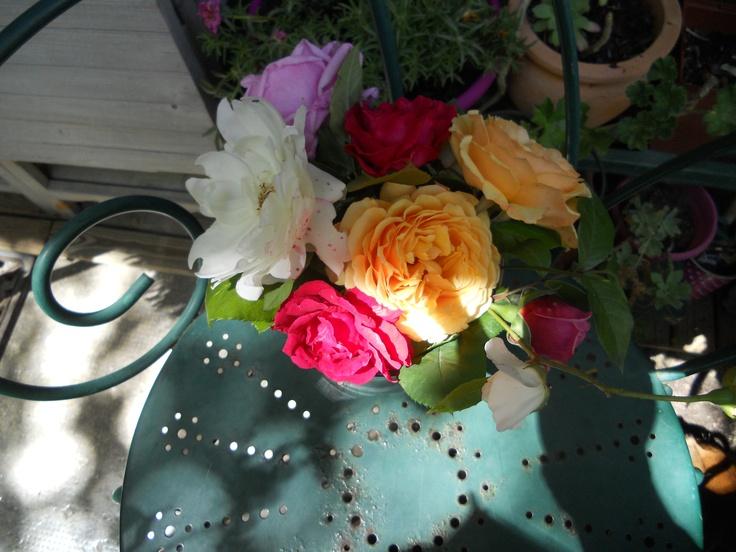 Les roses du jardin de ma mère - Cathy Gibilaro