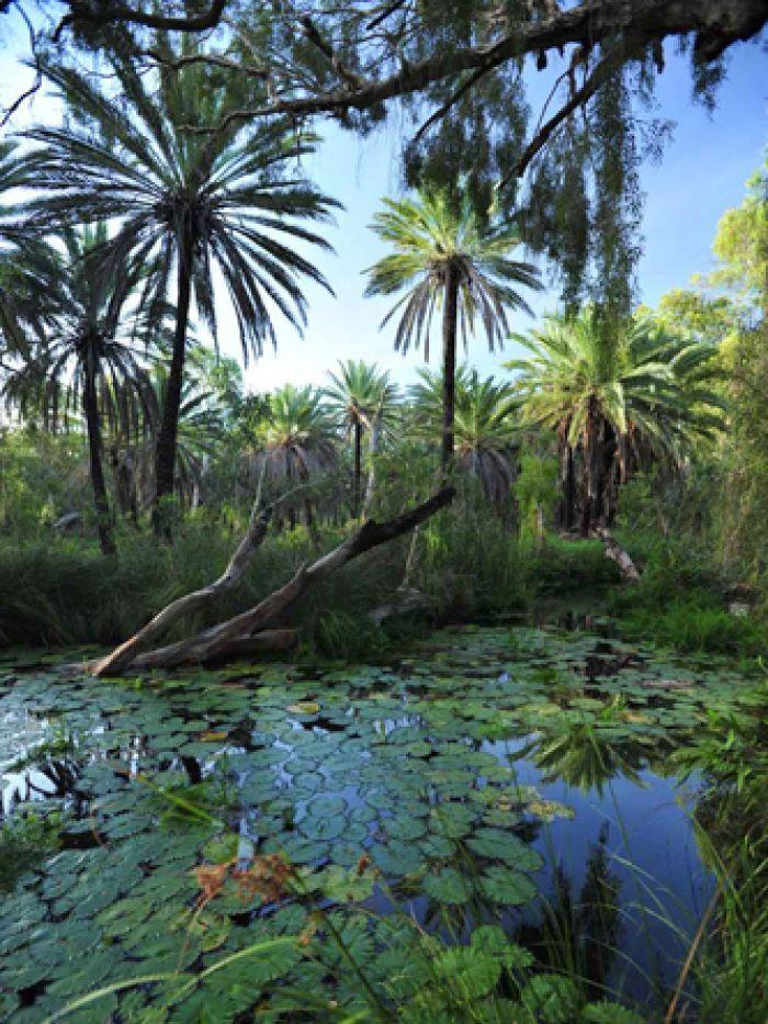Millstream-Chichester National Park, Western Australia