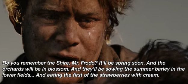 """On home sweet home:   16 """"Lord Of The Rings"""" Quotes To Get You Through The Rest Of 2016"""