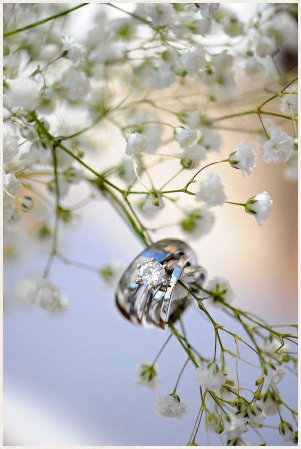 LOVE this ring shot by @mikkelpaige   mikkel paige photography