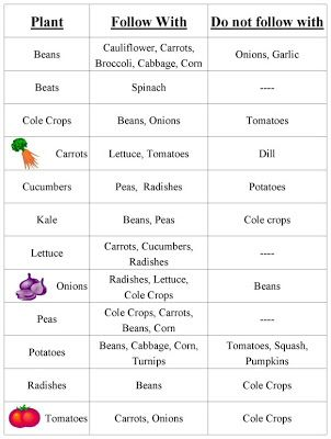 Vegetable Garden Crop Rotation Chart