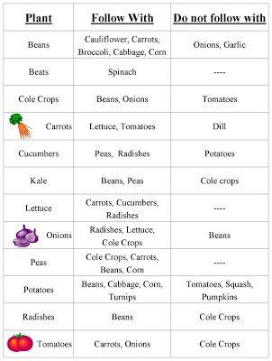 Vegetable Garden Crop Rotation Chart | therusticgarden