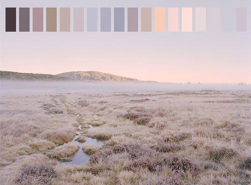 landscape blue colors nature light blue Peach lavender color palette