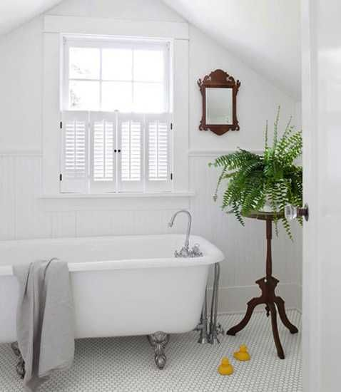 Bathroom Decor With Plants : Best images about decorating with plants on