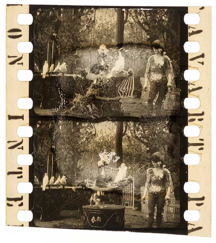 Nitrate Nocturne.