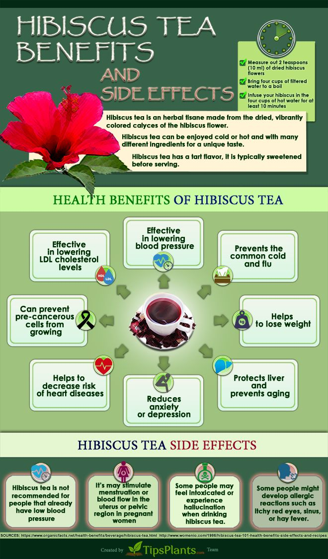 Easy Way To Know About Hibiscus Tea Benefits [Infographic]