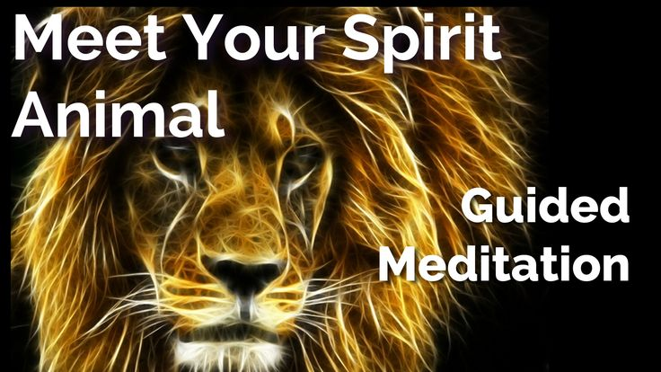 "Are you wondering what your spirit animal is?  Do you want to get closer to the idea of your power animal or spirit animal guide?  If so, this is what my free ""Find My Spirit Animal"" guided meditation and visualization is designed for :)  http://www.brettlarkin.com/find-your-spirit-animal/  This is a relaxing 20-minute visualization / meditation you can do sitting up or laying down."