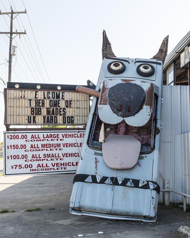 Quot Junk Yard Dog Quot At The Junk Yard Dogs Junkyard In San
