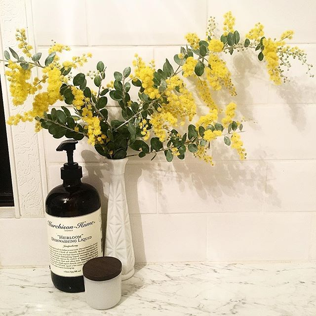 My kitchen smells of wattle 😊 #bliss #wattle #kitchen #circahome #murchisonhume
