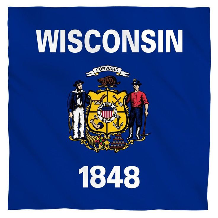 wisconsins state flag