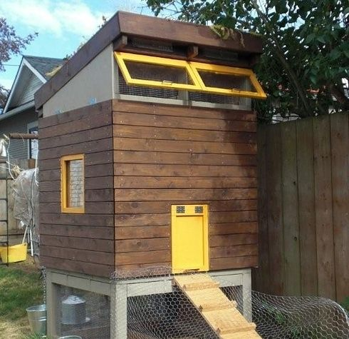 17 best images about chicken coops on pinterest for Modern chicken coop