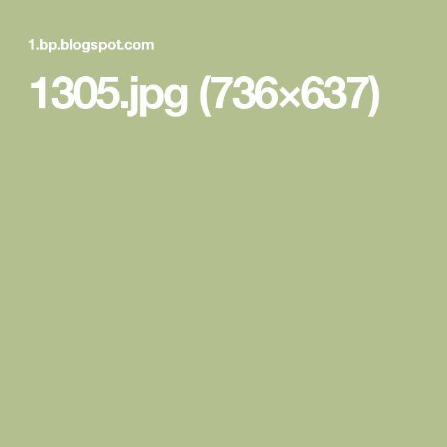 1305.jpg (736×637)