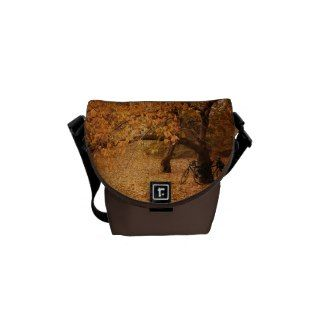 Central Park Autumn - New York City Messenger Bag