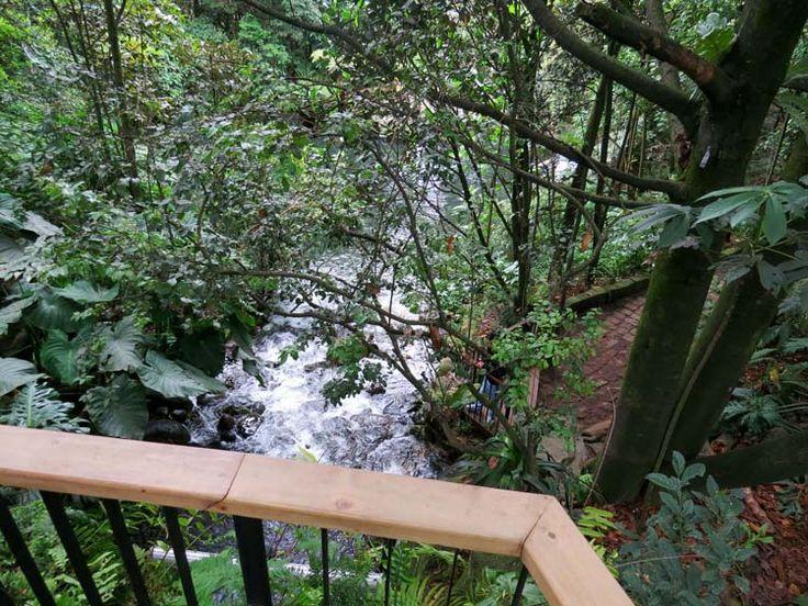 16. Cascada del jardín de los helechos vista desde el mirador de madera.